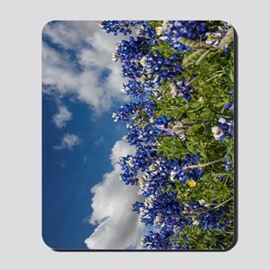 Texas Bluebonnets - 4217v Mousepad