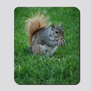 Squirrel in a Field Mousepad