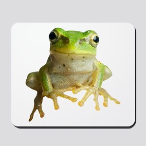 Pyonkichi the Frog Mousepad