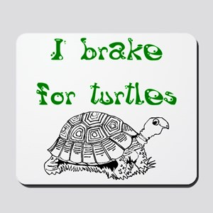 Turtles - Mousepad