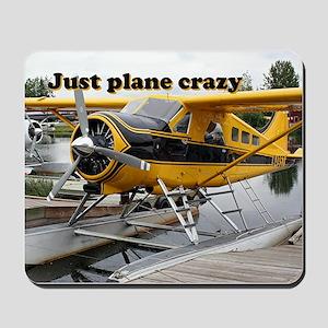 Just plane crazy: Beaver float plane, Alaska Mouse