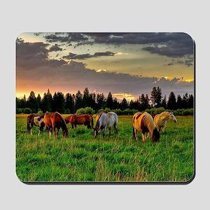 Horses Grazing Mousepad