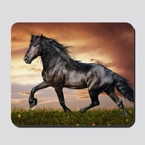 Beautiful Black Horse Mousepad