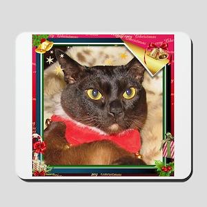 Sable Burmese Xmas, frame 2 Mousepad