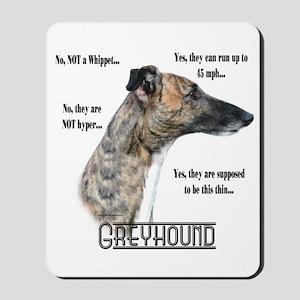 Greyhound FAQ Mousepad