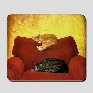 Cats sleeping on sofa. Mousepad