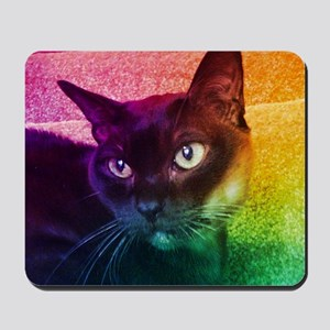 Burmese Cat Portrait B Mousepad