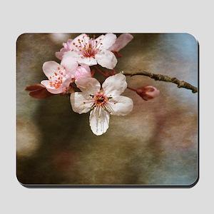 cherry blossom flowers Mousepad