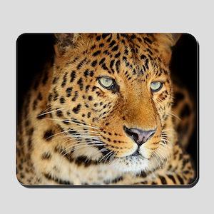 Leopard Portrait Mousepad