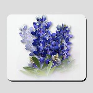 Bluebonnet Spray Mousepad