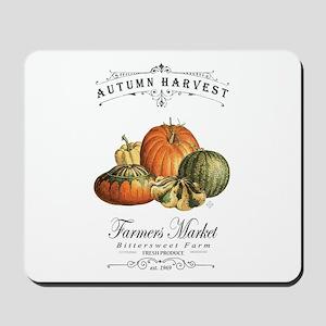 Modern vintage fall gourds and pumpkin Mousepad