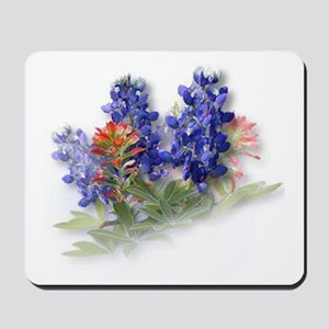 Bluebonnets with Indian Paint Mousepad