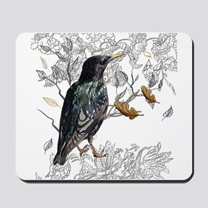 Leaves birds background set Mousepad