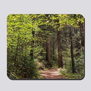 Forest Trail Mousepad