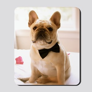 Dressed to the Nines Mousepad
