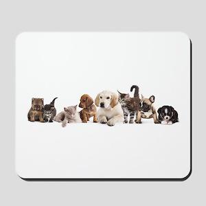 Cute Pet Panorama Mousepad