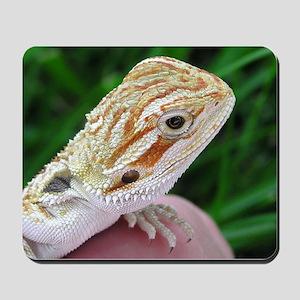 Beareded Dragon 002 Mousepad