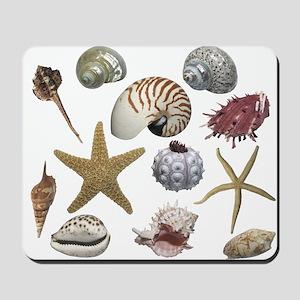 Shells Mousepad