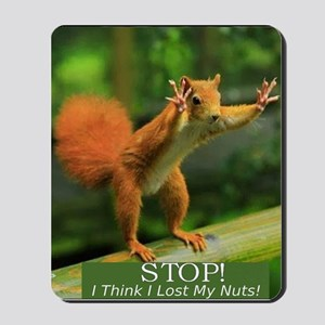 squirrel lost his nuts 2 Mousepad