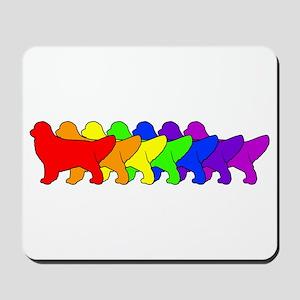 Rainbow Golden Mousepad