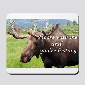 Moose with me and you're history: Alaskan moose Mo