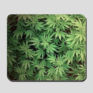 Marajuana Weed Pot Mousepad