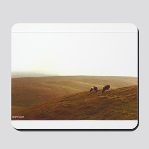 Point Reyes dairy pasture Mousepad