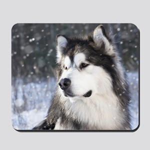 Call of the Wild Mousepad