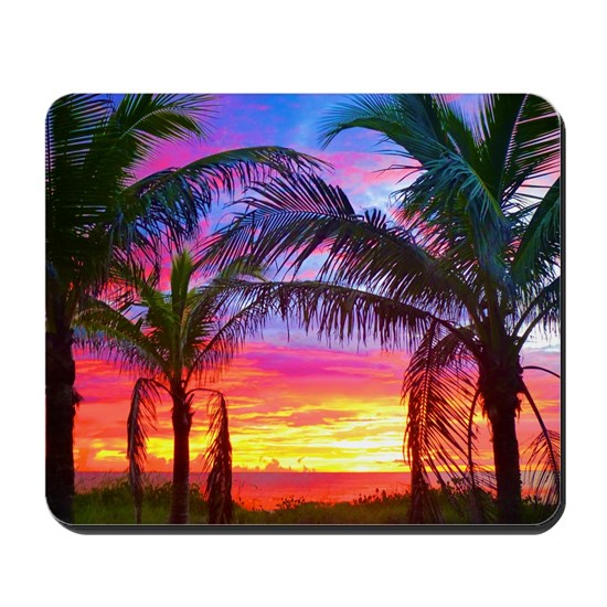 Captiva Island Sunset Palm Tree