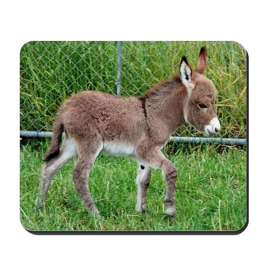 Miniature Donkey Foal Mousepad By Donkey Daze Cafepress