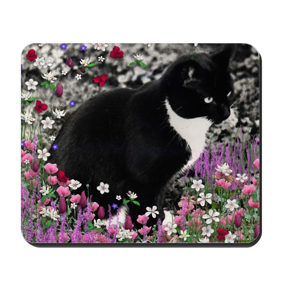 Freckles the Tux Cat in Flowers II