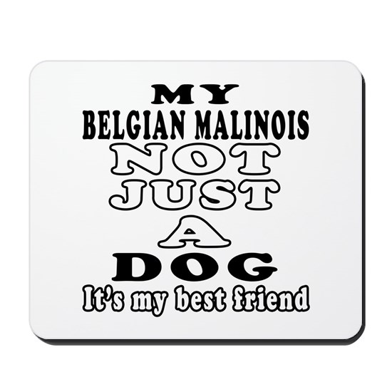 My Belgian Malinois not just a dog