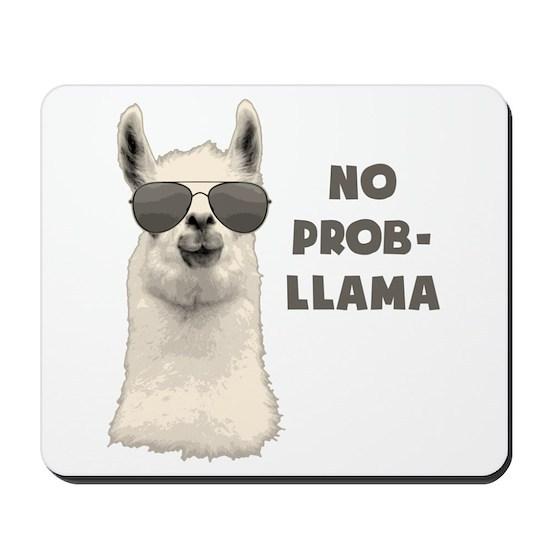 No Problem Llama