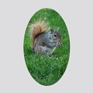 Squirrel in a Field 20x12 Oval Wall Decal