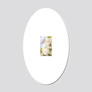 Cherry blossom (Prunus sp.) 20x12 Oval Wall Decal