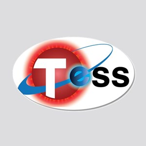 TESS Mission Logo 20x12 Oval Wall Decal