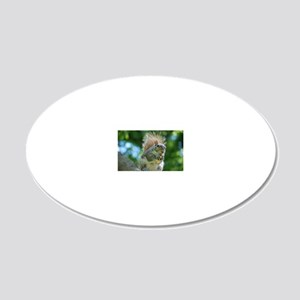 Hungry Little Squirrel 20x12 Oval Wall Decal