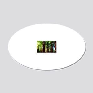 Redwood Forest 2 20x12 Oval Wall Decal