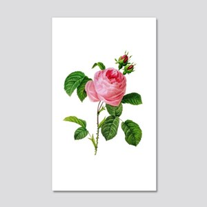 Pierre-Joseph Redoute Rose 20x12 Wall Decal
