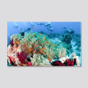 Coral Reef Red Sea, Ras Mohammed 20x12 Wall Decal