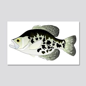 Black Crappie Sunfish CC 20x12 Wall Decal