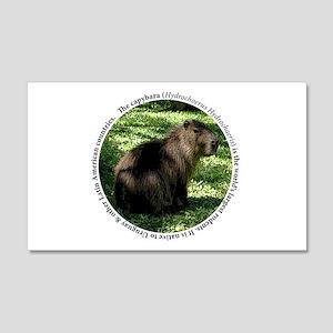 Capybara Circle Desgin 20x12 Wall Decal
