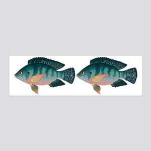 Tropical Fish Sale Cichlids Wall Art - CafePress