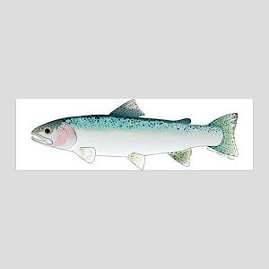 Steelhead rainbow trout Wall Decal