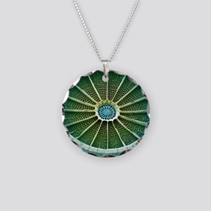 Diatom, SEM Necklace Circle Charm