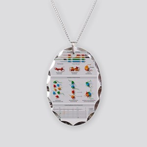 Histone structures, diagram Necklace Oval Charm