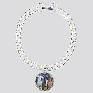 T-Starry Night - 3 Boxer Charm Bracelet, One Charm
