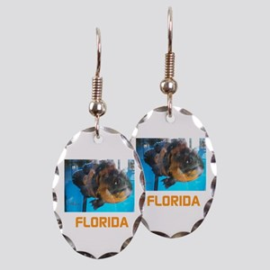 Florida Avins Fish. Earring Oval Charm