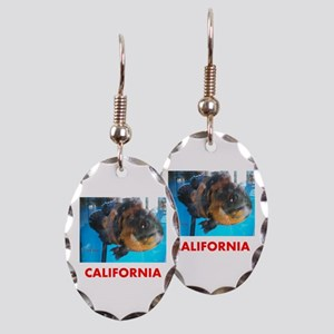 California Avins Fish. Earring Oval Charm