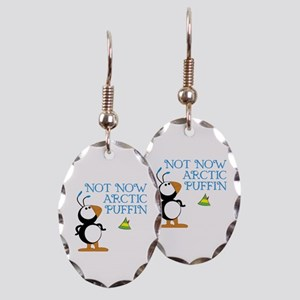 Not Now Arctic Puffin Earring Oval Charm